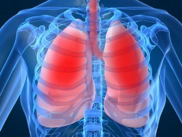 Viêm phổi, nhiễm trùng huyết tăng nguy cơ bệnh tim - 1