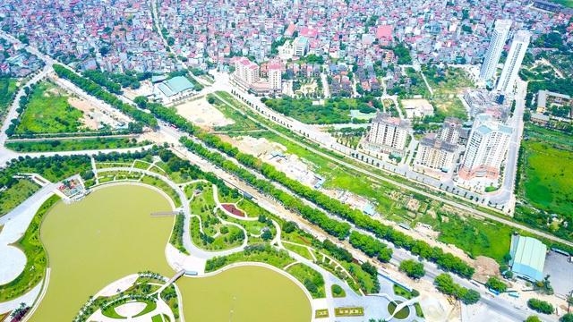 Hà Nội chưa quyết số phận cây xanh bên đường Phạm Văn Đồng