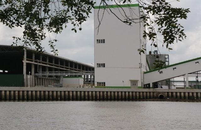 Hậu Giang đang có chủ trương nuôi cá ngay ống xả thải của nhà máy giấy Lee&Man
