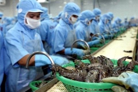 Bộ Công Thương đề nghị Chính phủ Úc sớm bãi bỏ lệnh tạm ngừng nhập khẩu tôm và thịt tôm chưa nấu chín.