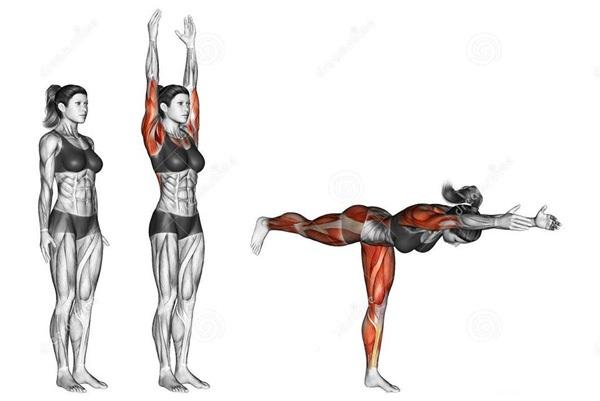 Động tác yoga tác động tới các cơ như thế nào? - 7