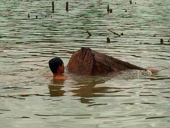 Lực lượng chức năng trục vớt gỗ lậu dưới sông