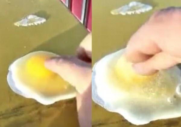 Quả trứng đóng băng bề mặt sau vài giây tiếp xúc với không khí. (Ảnh: Youku)