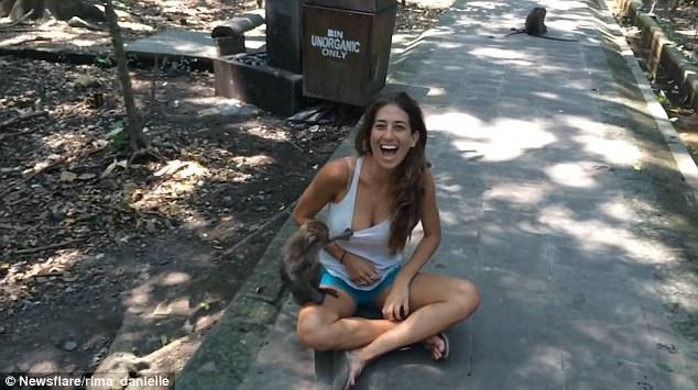 """Khỉ cố kéo ngực áo """"ghẹo"""" nữ du khách xinh đẹp - 4"""