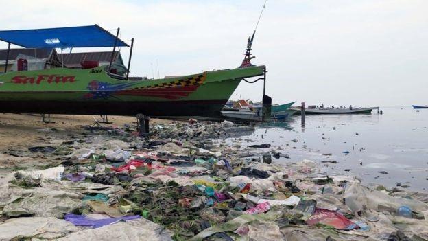 Các mảnh nhựa trên bãi biển ở Sulawesi, Indonesia – Ảnh của Joleah Lamb.