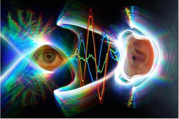 Nghiên cứu mới cho thấy hệ thống thính giác và thị giác của con người là một phần của hệ thống điều khiển động cơ kết nối trong não.
