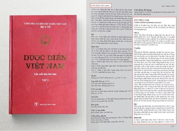 Dây thìa canh chính thức được đưa vào Dược điển Việt Nam