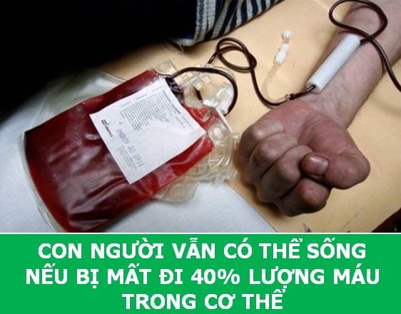 Những sự thật sẽ về máu người sẽ khiến bạn phải ngỡ ngàng! - 8