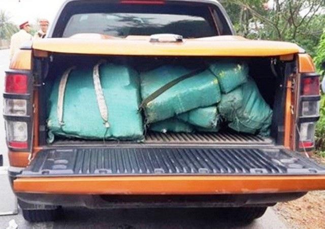 Hơn 300 kg ma túy chất đầy cốp xe bán tải
