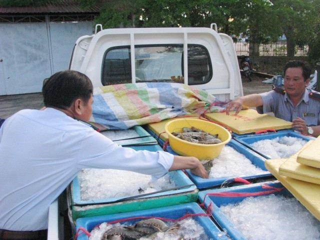 Lực lượng chức năng Bạc Liêu bắt một xe đang vận chuyển tôm tạp chất.