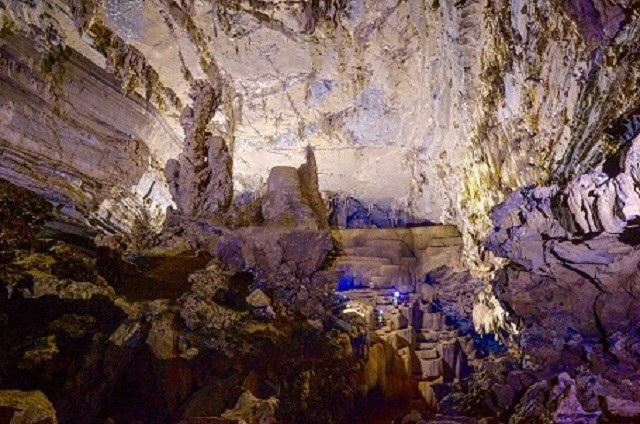 Đặc biệt, nhờ ánh sáng mặt trời chiếu vào bên trong nên thực vật ở hang Tiên 1 phát triển khá tốt, góp phần tạo nên bức tranh thiên nhiên đa màu sắc.