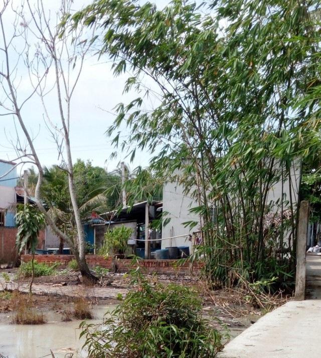 Nhà ông Đỗ Văn Tròn chiếm toàn bộ phần mặt tiền của khu đất.