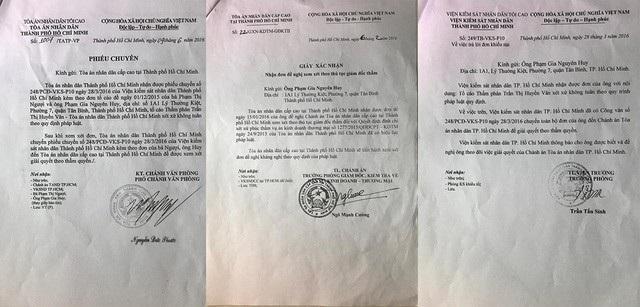 Quyết định đình chỉ xét xử phúc thẩm vụ án kinh doanh thương mại của TAND TPHCM là bất thường - Ảnh 4.