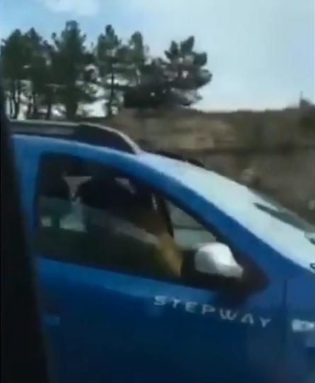 Cặp đôi vừa quan hệ vừa lái ô tô ở Tây Ban Nha