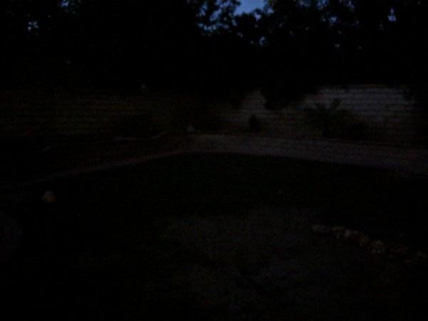 Ấn tượng với những bức ảnh chụp bằng chế độ ban đêm của Pixel 3 và 3 XL - 4
