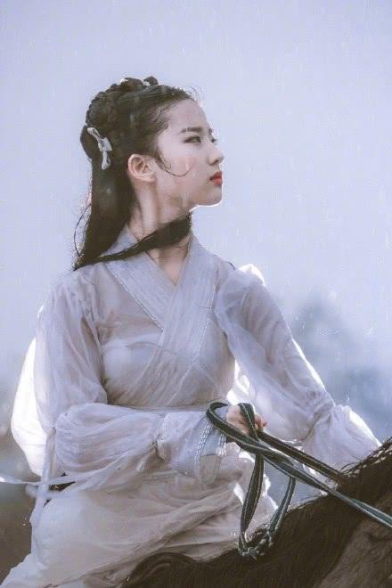 Cùng tham gia với Lưu Diệc Phi trong phim này còn có nam tài tử Chân Tử Đan, nữ minh tinh Củng Lợi và nam diễn viên nổi danh của dòng phim võ thuật - Lý Liên Kiệt.