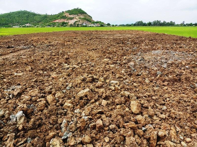 Doanh nghiệp ngang nhiên múc ruộng, khoét núi lấy đất trái phép tại Bình Định - Ảnh 3.