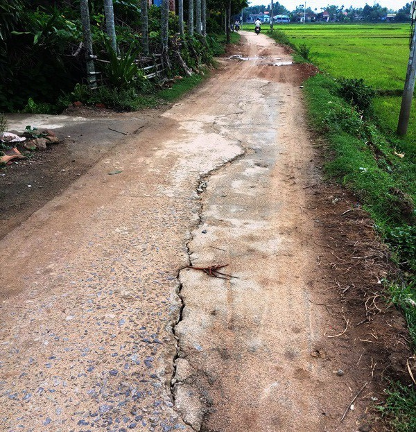 Doanh nghiệp ngang nhiên múc ruộng, khoét núi lấy đất trái phép tại Bình Định - Ảnh 2.