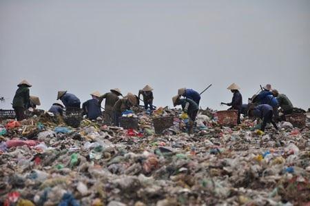 Công ty môi trường đô thị Đà Nẵng bị phạt hơn 1 tỷ, thay người đại diện vốn nhà nước - Ảnh 1.