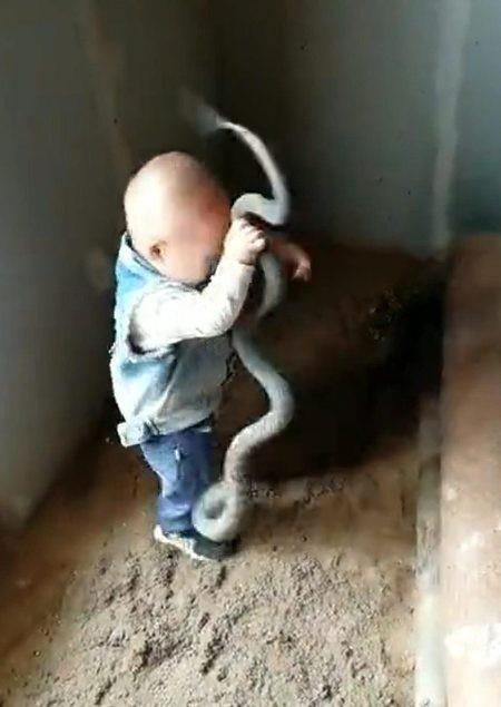 Con rắn dài quằn quại trên bàn tay bé nhỏ của cậu bé