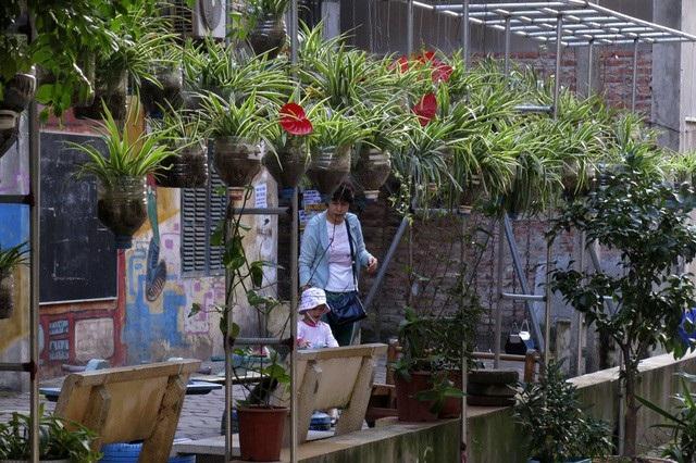Để cải thiện môi trường sống và tạo cảnh quan tích cực hơn, rất nhiều ngõ phố đã hình thành các vườn treo chậu hoa, cây cảnh do người dân khu phố tạo nên. (Ảnh: Hữu Nghị)