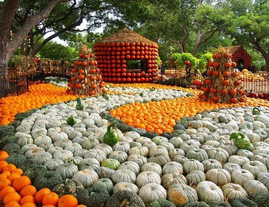 Lễ hội ma quỷ, đến thăm ngôi làng làm từ gần 100.000 quả bí ngô ở Mỹ - 4