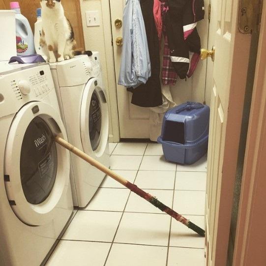 Cần gì phải thay chốt cửa máy giặt bị hỏng khi một chiếc gậy đã có thể làm tất cả?