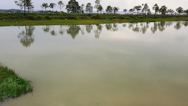 Vụ xin cải tạo hồ trồng sen, đào hết đất bán: Kỷ luật hàng loạt cán bộ để xảy ra sai phạm - Ảnh 1.