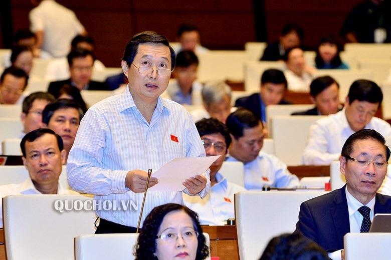 Đại biểu Hà Nội lo tình huống nhà máy điện hạt nhân Trung Quốc gặp sự cố - Ảnh 1.