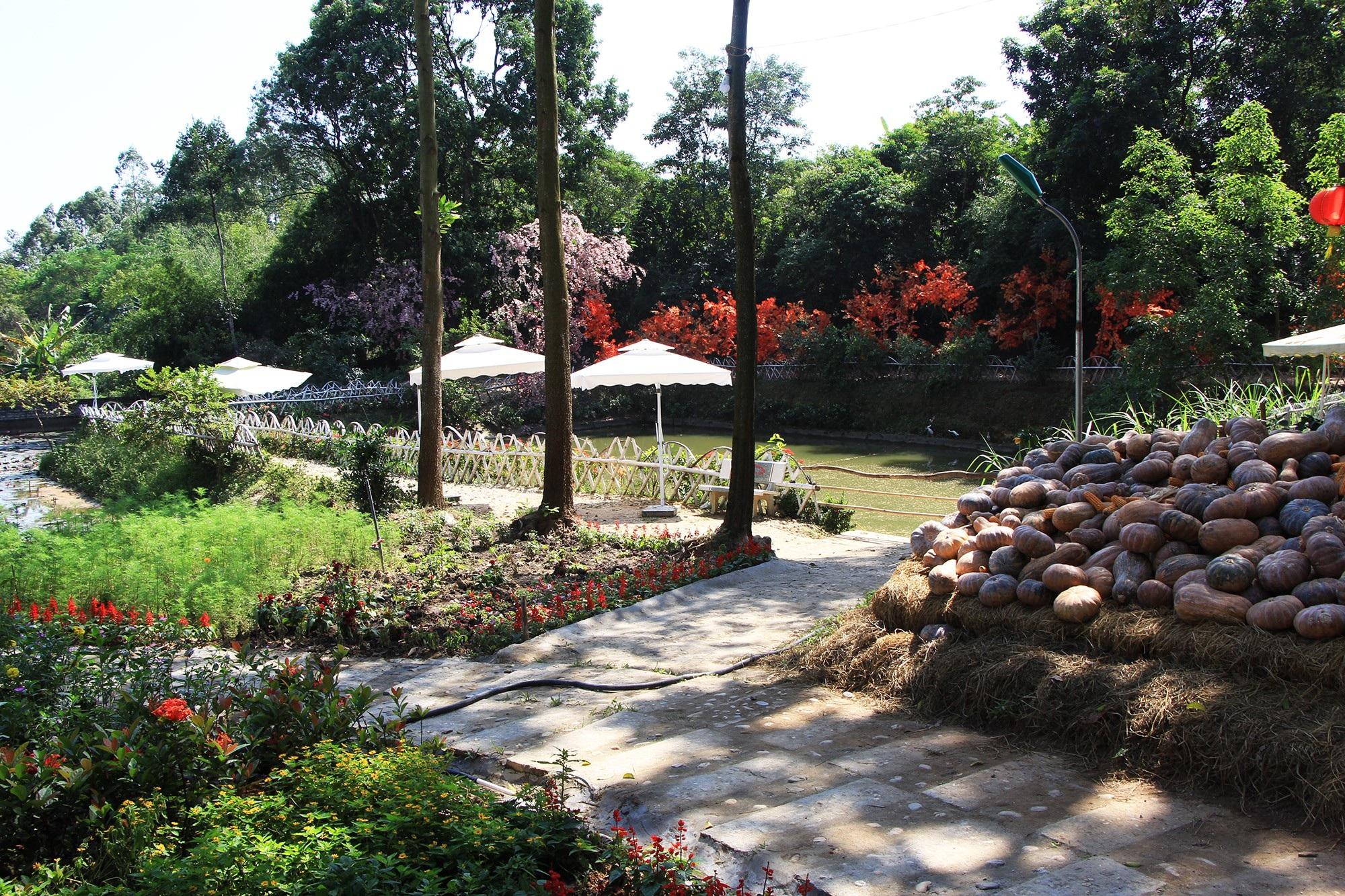 Hình ảnh công trình xây dựng trái phép trong Khu di tích Đền Hùng - Ảnh 21.