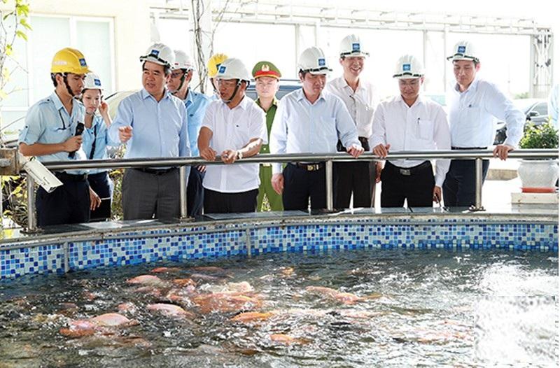 Không chủ quan về công tác bảo vệ môi trường tại Formosa - Ảnh 2.