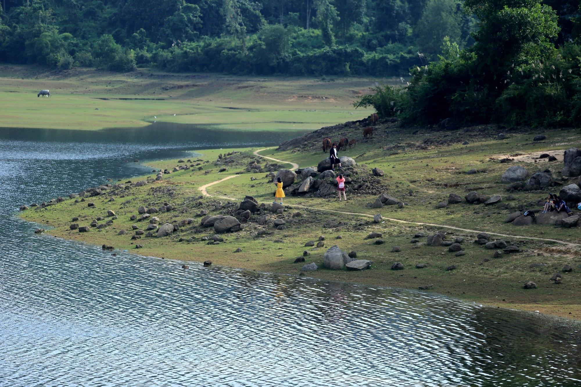 Hồ thủy lợi Phú Ninh khô cạn giữa mùa mưa - Ảnh 3.