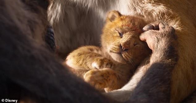 """Diện mạo sư tử con Simba lúc mới chào đời có thể """"đốn tim"""" người xem."""