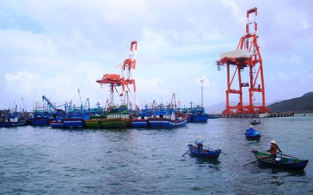 Cả nghìn tàu cá đang về neo đậu tại khu vực neo đậu tàu thuyền ở cảng Quy Nhơn tránh bão số 9.