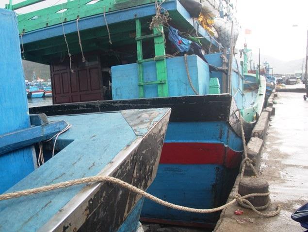 Các tàu thuyền ngoài khơi vào Cảng cá Quy Nhơn neo đậu và bán thủy sản chạy bão.