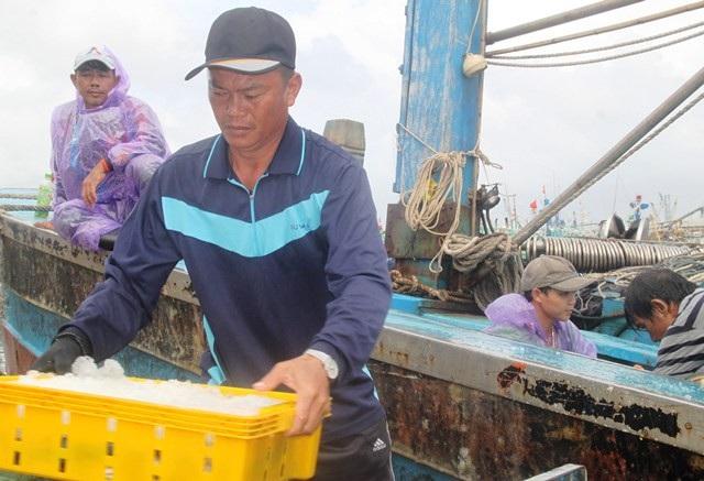 """Ngư dân Bình Định chủ động neo đậu tàu thuyền """"né"""" bão số 9 - 5"""