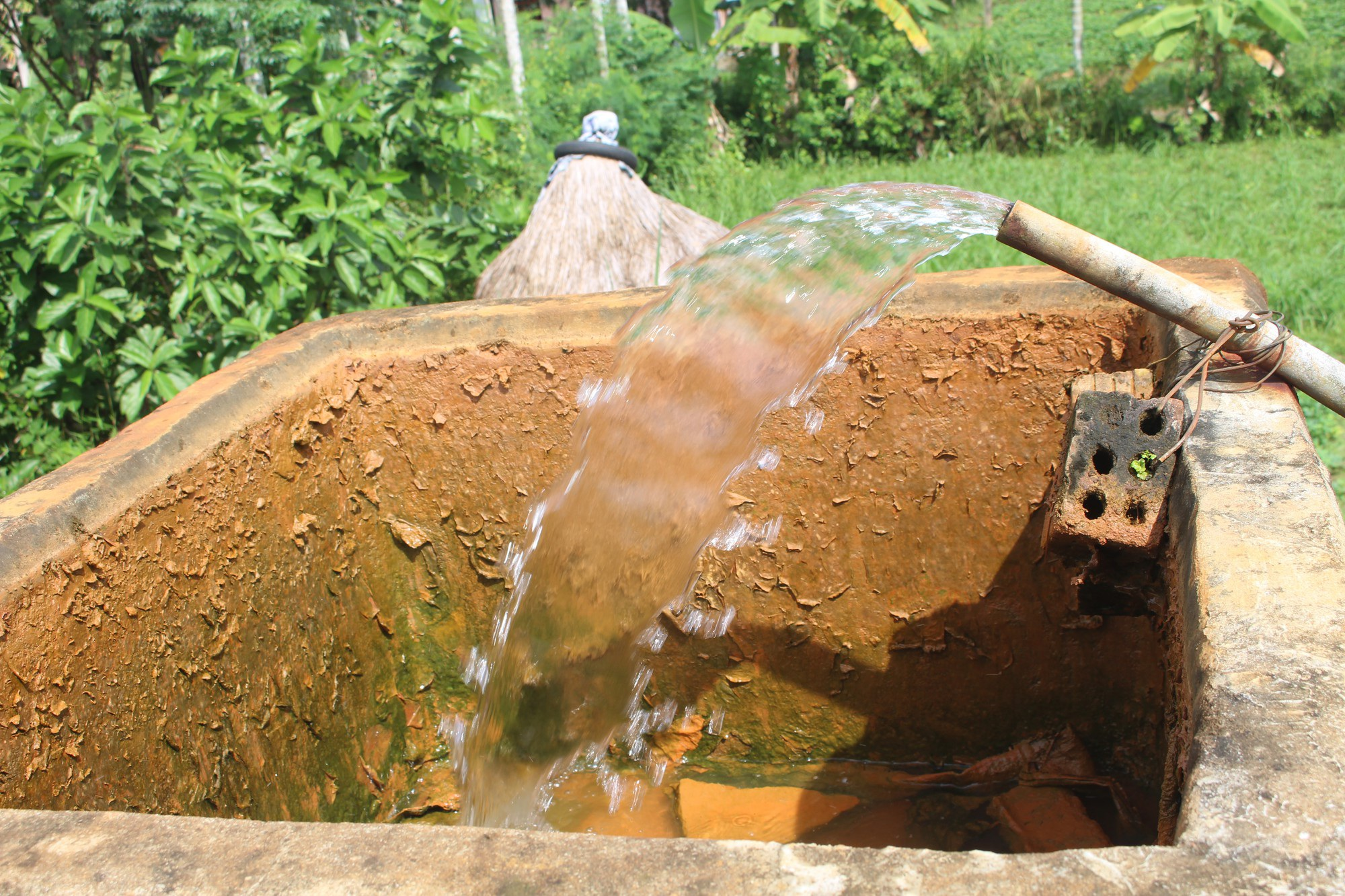 Hàng trăm hộ dân dùng nước nhiễm phèn vàng như nghệ - Ảnh 1.