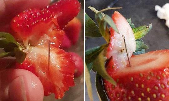 Kim khâu được tìm thấy trong dâu tây ở Úc. Ảnh: AAP-ABC