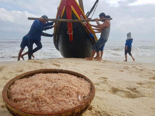 """Thời gian gần đây, ngư dân xã biển Hải Ninh, huyện Quảng Ninh (Quảng Bình) đang rất hứng khởi vì đánh bắt được lượng lớn ruốc (khuyếc) biển. Cũng nhờ """"lộc biển"""", ngư dân địa phương này có thể thu về từ 2 đến 4 triệu đồng mỗi ngày. (Ảnh: Tiến Thành)"""