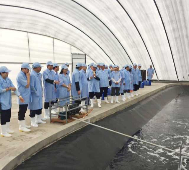 Các đại biểu tham quan cơ sở sản xuất tôm giống. (Ảnh: CTV)