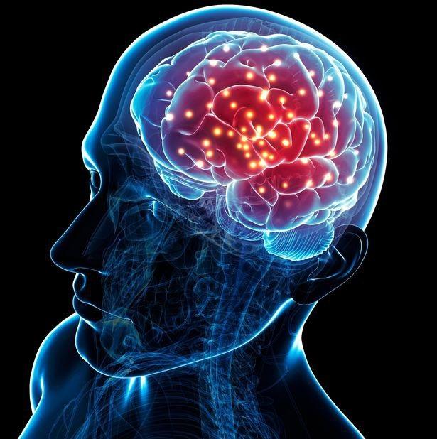 Một nghiên cứu đặt ra giả thuyết rằng não bộ của một người vẫn hoạt động sau khi tim họ ngừng đập.