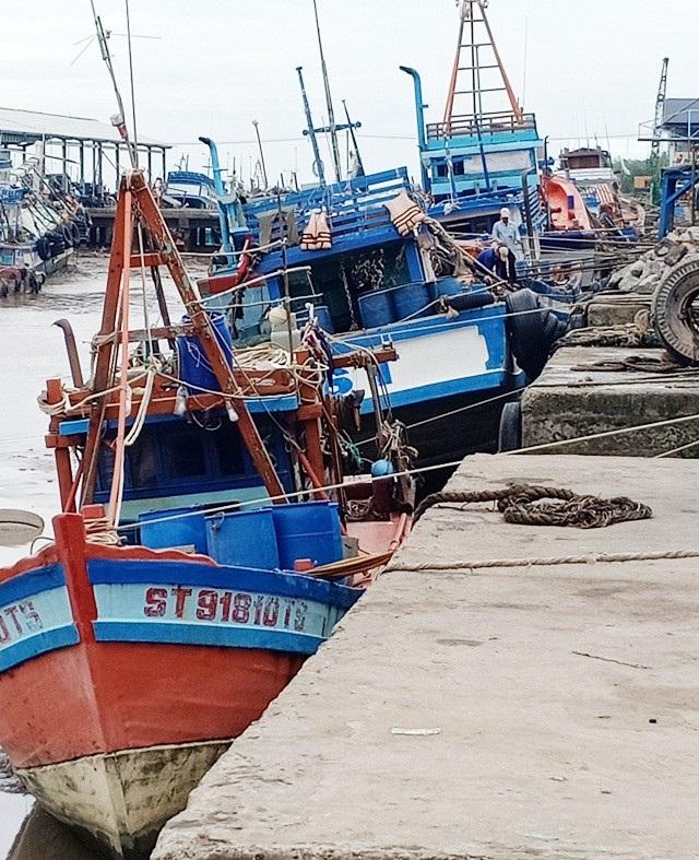 Nhiều tàu cá đã vào nơi tránh trú an toàn.