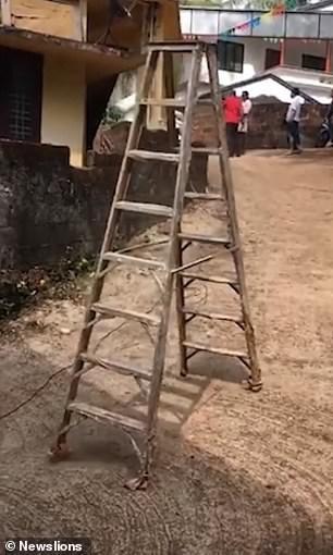Thoạt nhìn, đây chỉ là một chiếc thang gỗ bình thường