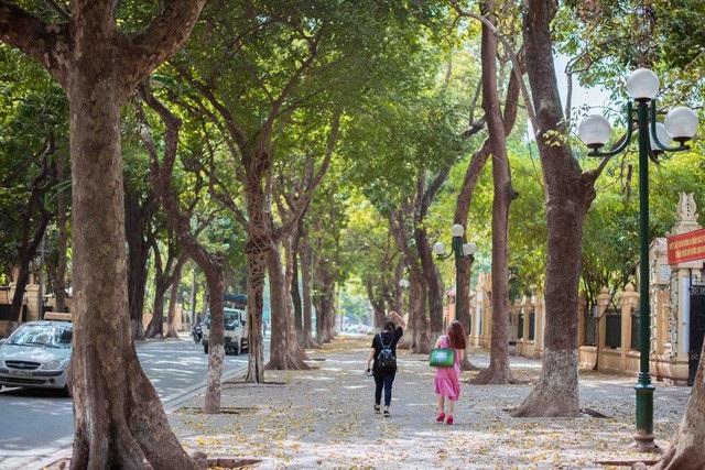 Đường Phan Đình Phùng được mệnh danh là con đường lãng mạn nhất Hà Nội. Ảnh: Toàn Vũ