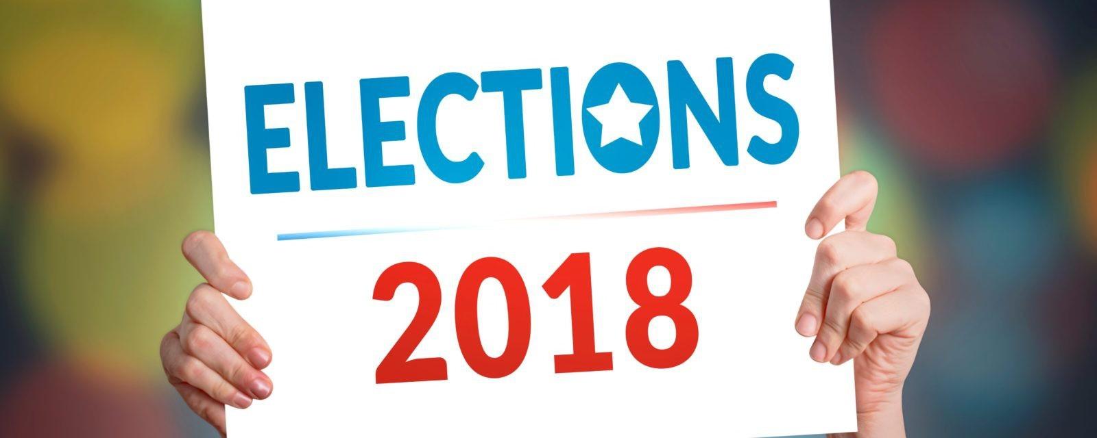 Bầu cử giữa nhiệm kỳ: Cuộc chiến giữa hai phe voi - lừa trong quốc hội Mỹ - Ảnh 1.