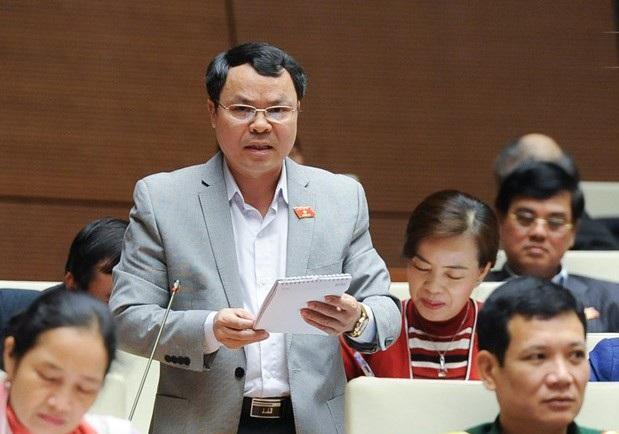 Đại biểu Nguyễn Tiến Sinh bày tỏ lo ngại về vấn đề biên soạn sách giáo khoa