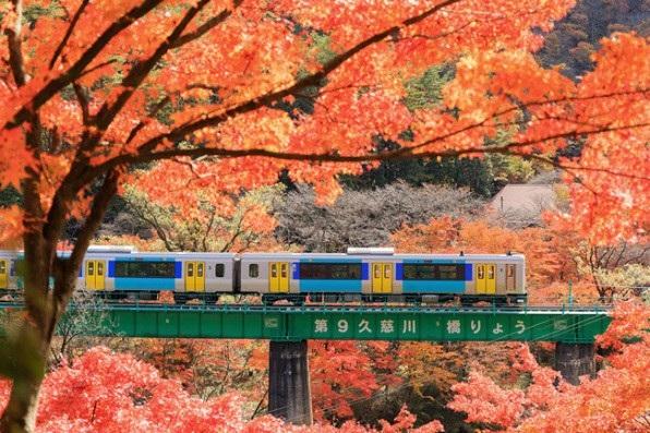Những địa điểm ngắm lá vàng lá đỏ nổi tiếng nhất nước Nhật - 8