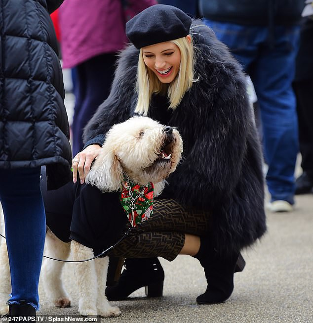 Devon Windsor tranh thủ chơi với một chú cún trên phố.