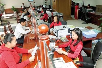 Vốn Agribank góp phần xây dựng thương hiệu nông sản Việt - Ảnh 2.