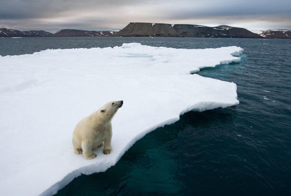 """Đoạn phim sẽ cho bạn thấy băng ở Bắc Cực """"bốc hơi"""" nhanh như thế nào! - Ảnh 3."""